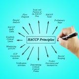 Kobiety ręki writing element HACCP zasada dla używać w produkci fotografia stock