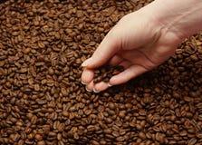 Kobiety ręka i kawowe fasole Obraz Royalty Free