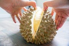 kobiety ręka struga durian Obraz Stock