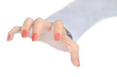 Kobiety ręki chwyt Fotografia Stock