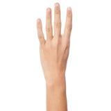 Kobiety ręki seans liczba cztery Zdjęcia Stock