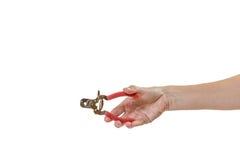 Kobiety ręki mienia psa gwoździa cążki odizolowywający Zdjęcia Royalty Free