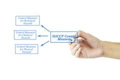 Kobiety ręki writing element HACCP Kontrolne miary dla biznesu Zdjęcia Stock