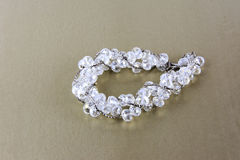 Kobiety ` s jewellery i jewellery Obrazy Royalty Free