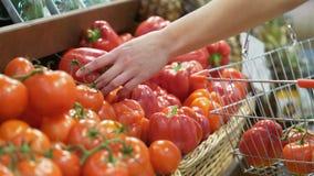 Kobiety ` s ręki biorą warzywa w minimarket zbliżeniu zdjęcie wideo