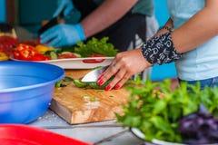 Kobiety ` s ręki cią świeżych warzywa Obrazy Stock
