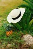 Kobiety ` s ręki, kapelusz, morze, ananas, ręki, radość, odpoczynek, właściwa dokrętka zdjęcie stock