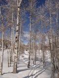 Kobiety snowshoeing Zdjęcie Royalty Free