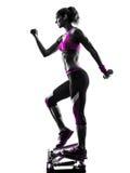 Kobiety sprawności fizycznej stepper sylwetka Obrazy Royalty Free