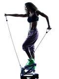 Kobiety Stepper sprawność fizyczna ćwiczy sylwetkę Zdjęcia Stock