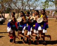 Kobiety w tradycyjnych kostiumach przed Umhlanga tana aka Trzcinową ceremonią, Lobamba, Swaziland obraz royalty free