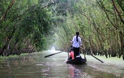 Kobiety wioślarska łódź przy Tra Su lasem, Giang, Wietnam Obrazy Stock