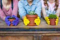 Kobiety z roślinami w flowerpots Fotografia Royalty Free