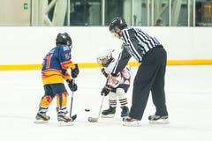 Kobold, der zwischen Spielern von EisHockeyteams spielt Stockfoto