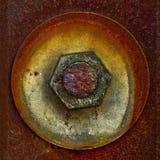 Kobold verwundet oben auf einer rostigen Schraube Lizenzfreie Stockbilder