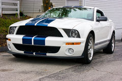Kobra 2009 Ford-Shelby GT 500 Stockbild