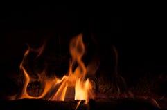 Kobra, die vom Feuer steigt Stockbild