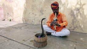 Kobra Enchanter, schlängeln sich das Bezaubern stock footage