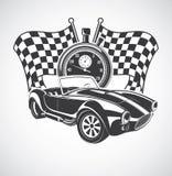Kobra för tävlings- bil Fotografering för Bildbyråer