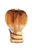 kobra isolerat trä Arkivfoto