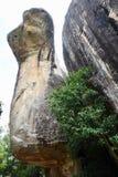 Kobrafelsen bei Sigiriya Stockfotografie