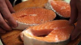 Koch befördert rote Fische stock footage