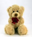 Kocha ciebie…. Zdjęcie Stock