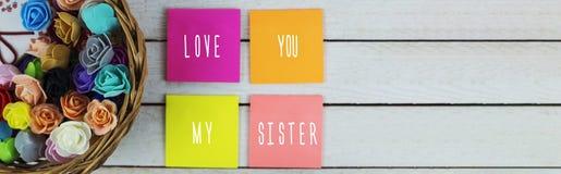 Kocha ciebie mój siostra obraz stock