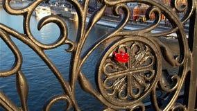 Kocha kędziorek dołączającego ogrodzenie most nad rzeką moscow Rosja zdjęcie wideo