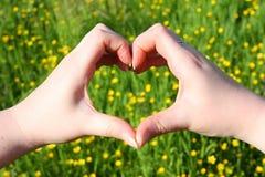 kochająca natura Fotografia Stock