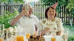 Kochająca starsza pary odświętności rocznica z tortem zbiory wideo