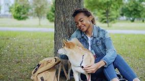 Kochający amerykanin afrykańskiego pochodzenia dziewczyny uczeń muska uroczego shiba inu psa, pieści zwierzęcego obsiadanie pod d zbiory wideo