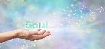Kochający czuwanie dusza obraz royalty free