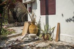 Kochający ogród w Skala Kefalonia Cephalonia zdjęcie stock