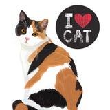 Kocham ślicznego kota royalty ilustracja