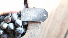Kocham żywność organiczną zbiory wideo