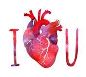 Kocham ciebie pocztówkowego z sercem Zdjęcie Stock