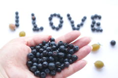 Kocham czarne jagody Fotografia Royalty Free