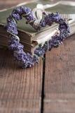 Kocham książki Zdjęcie Royalty Free