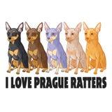 Kocham Prague ratters royalty ilustracja