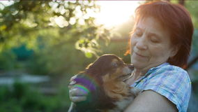 Kochanka kocha psa zbiory wideo