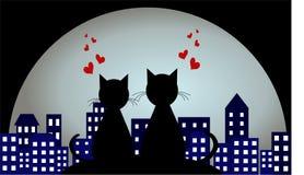 Kochankowie w tle nocy miasto Miłość kotów target1283_0_ royalty ilustracja