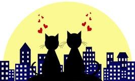 Kochankowie w tle nocy miasto Miłość kotów target1283_0_ Wektorowy illustranion pojęcie ilustracji
