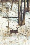 Kochany pozować dla kamery na śnieżnym dniu obrazy royalty free
