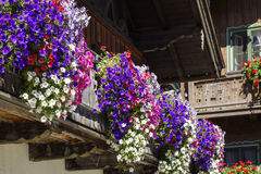 Balcony flowers on a house in Kochel, Bavaria. Kochel am See, Kochelsee, Balcony Flowers at a Farmhouse, Bavaria, Upper Bavaria, Germany, Europe Stock Image