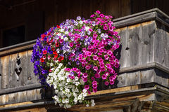 Balcony flowers on a house in Kochel, Bavaria. Kochel am See, Kochelsee, Balcony Flowers at a Farmhouse, Bavaria, Upper Bavaria, Germany, Europe Stock Photos