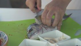 Kochen der Fische stock video