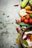 Kochen der Hühnersuppe mit Gemüse in einem großen Topf Lizenzfreie Stockfotos