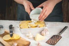 Kochen des Kartoffelgratins stockfotos