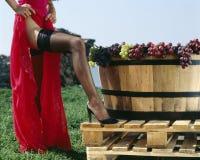 Kochen des Weins Lizenzfreie Stockfotos